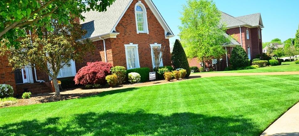 lawn care 1.1